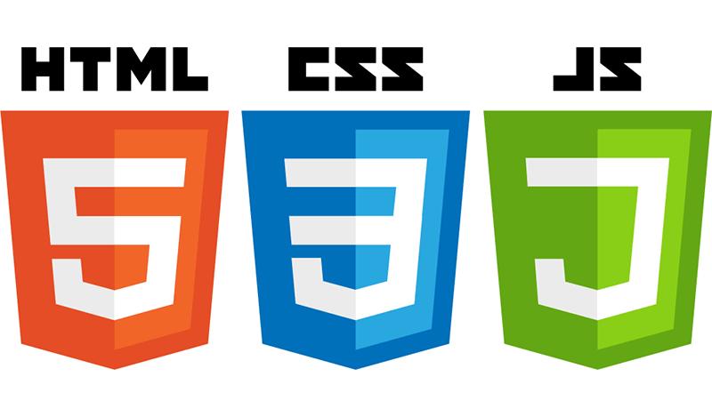 زبان های برنامه نویسی سمت کاربر