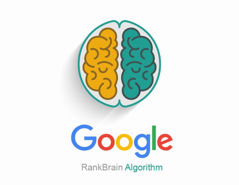 معرفی الگوریتم رنک برین (Rank Brain) گوگل